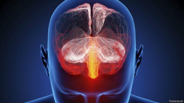 Ilustración del cerebro humano