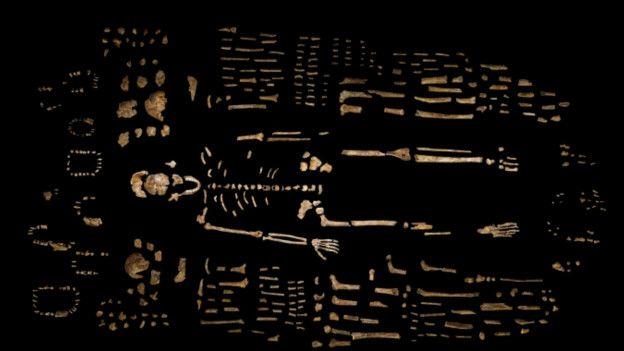 Restos encontrados en una cueva en Sudáfrica