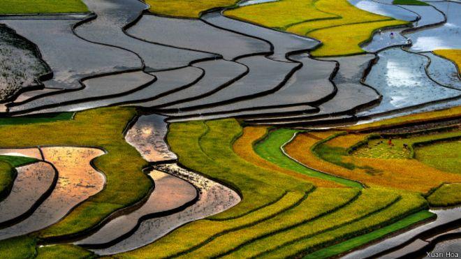 Ảnh của nghệ sĩ nhiếp ảnh Xuân Hòa
