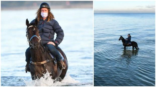 Ciaron Maher with Sir Dragonet in the sea