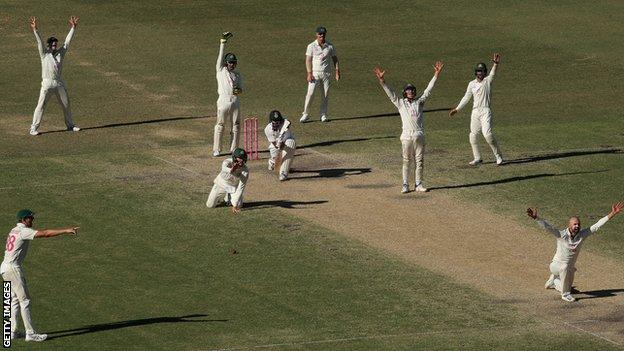 Nathan Lyon and the Australia fielders appeal for the wicket of Ravichandran Ashwin