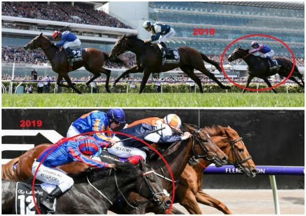 Melbourne Cup 2018 and 2019