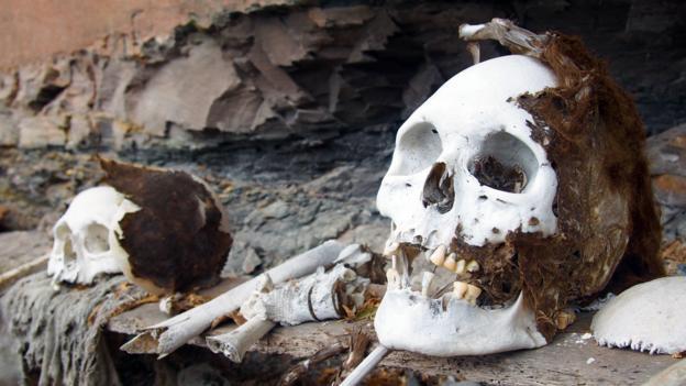 Human remains at Laguna de los Condores (Credit: Credit: Krista Eleftheriou)