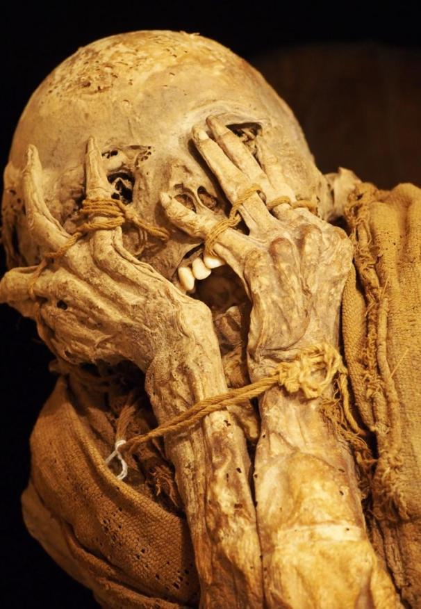 Mummies conserved in the Leymebamba Museum (Credit: Credit: Krista Eleftheriou)