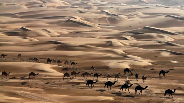 BBC Travel Living In Abu Dhabi