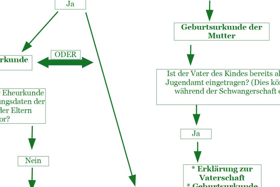 Diagramm Anmeldeunterlagen Ausschnitt