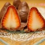 イチゴ探偵|【きらぴ香】入りのチョコ!ハリタカカオの「イチゴのフレッシュフルーツタブレット」