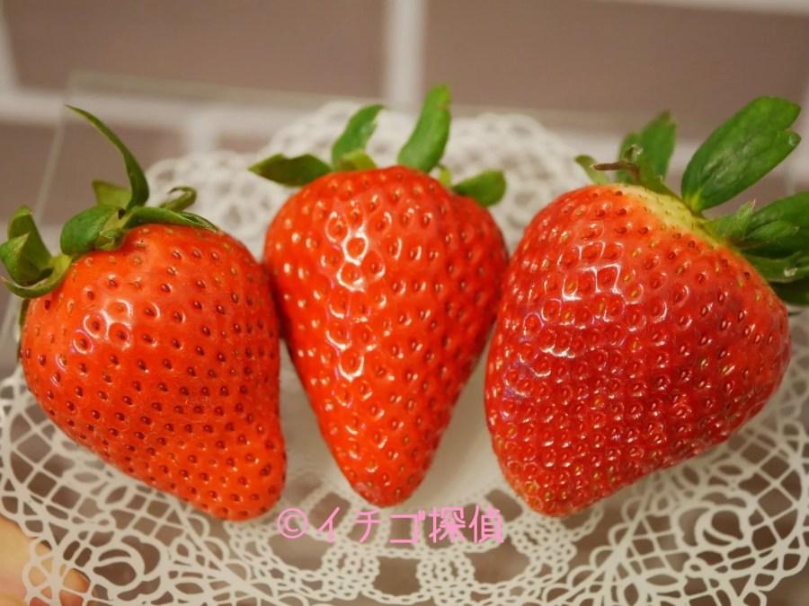 イチゴ探偵|【ラブソング】【キングベリー】【ひな苺】深作農園のオリジナルいちご3種を食べ比べ!