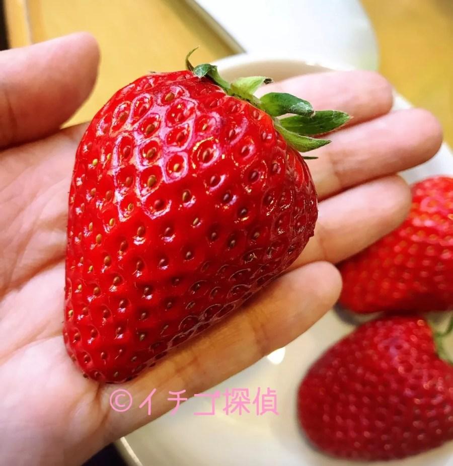 イチゴ探偵 高橋みなみの「これから、何する?」で紹介した【ラブソング】&【ひな苺】のケーキをカフェコムサで!