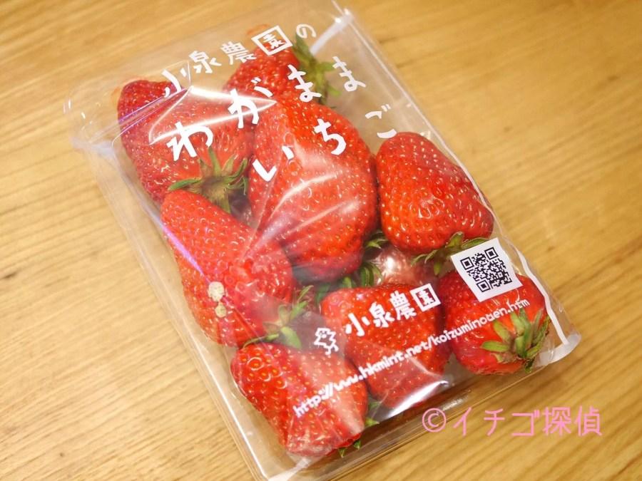 イチゴ探偵|ファーマーズマーケットで【わがままいちご】と【いちごっ子】をGET!ブランドいちごを食べ比べ!
