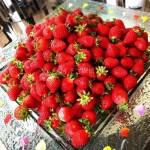 イチゴ探偵 5月7日まで延長!帝国ホテル「ザ パーク」苺スイーツブフェ!生いちごや約50種のメニューを食べ放題!