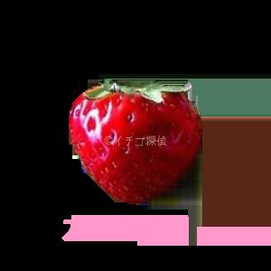 イチゴ探偵 カレンベリー品種図鑑