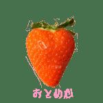 イチゴ探偵|おとめ心品種図鑑・断面図