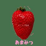 イチゴ探偵|あまみつ品種図鑑・断面図
