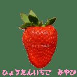 イチゴ探偵|ひょうたんいちご品種図鑑