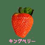 イチゴ探偵|キングベリー品種図鑑