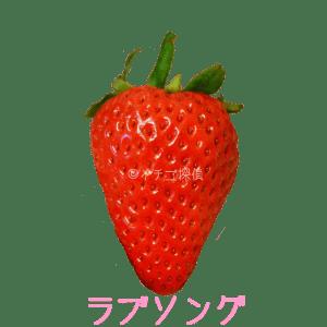 イチゴ探偵|ラブソング品種図鑑