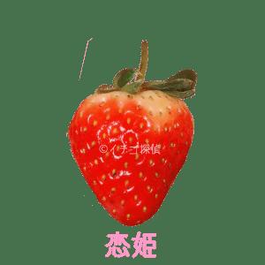 イチゴ探偵 恋姫品種図鑑