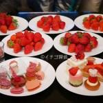 【ストロベリー&ルビー ときめくスイーツブッフェ】を実食!ANAインターコンチネンタルホテル東京