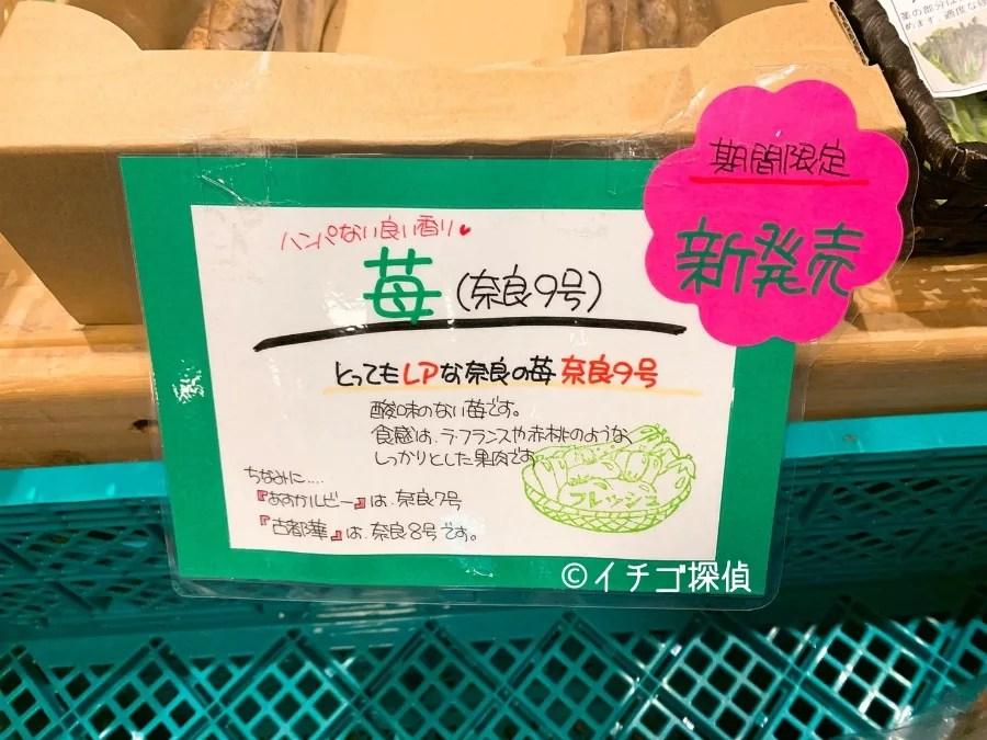 【ホテル日航奈良】古都華パフェに2種のいちごタルトプレート!奈良のいちごフェアでアスカルビーも堪能!