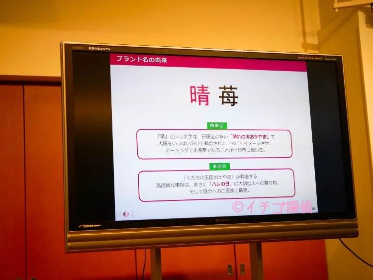 \実食/岡山県の新ブランドいちご『晴苺』ラトリエモトゾーやイマノフルーツファクトリーで晴苺スイーツも