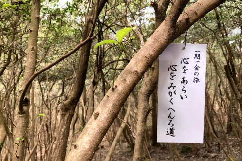 """there is one single sprout on this tree - the sign writes """"ichigoichie"""" and """"a rough heart can be polished"""" towards Shiromineji #81"""