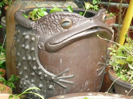 A pottery frog looking very content!