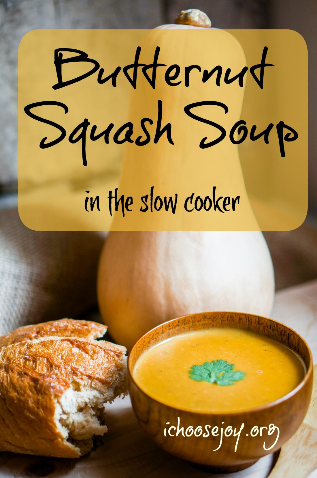 Butternut Squash Soup in the slow cooker