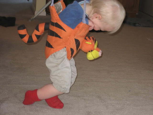 Tired baby in the Tiger bouncy