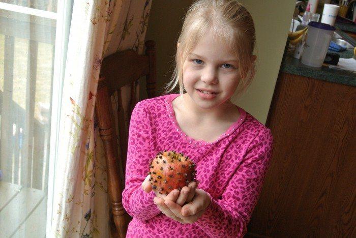 Clove Apple 006