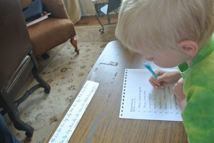 Review of Alpha-Phonics: A Primer for Beginning Readers