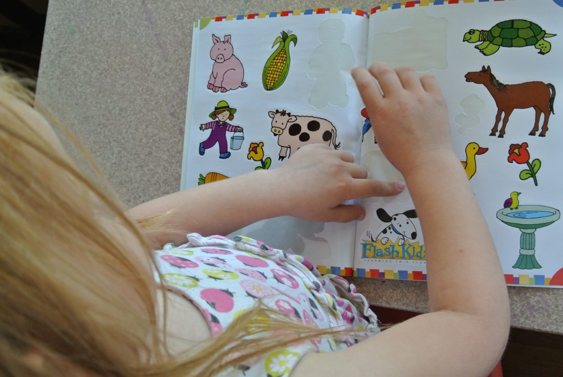 Review of Flash Kids Educational workbooks & flash cards