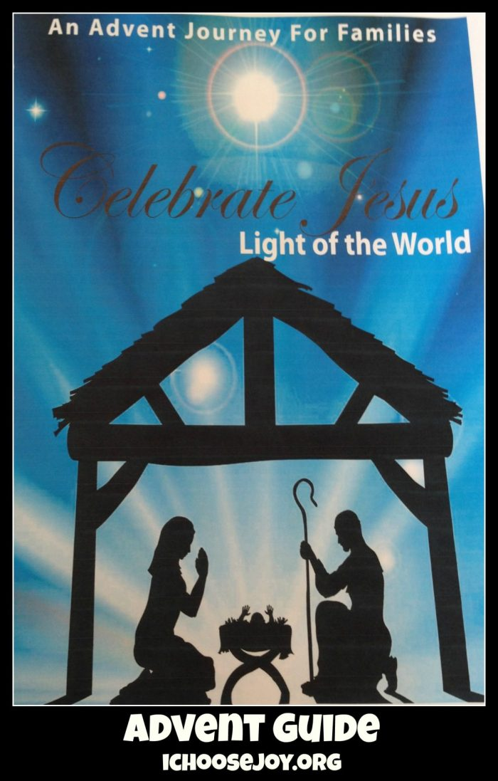 "Review of ""Celebrate Jesus: An Advent Journey For Families"""