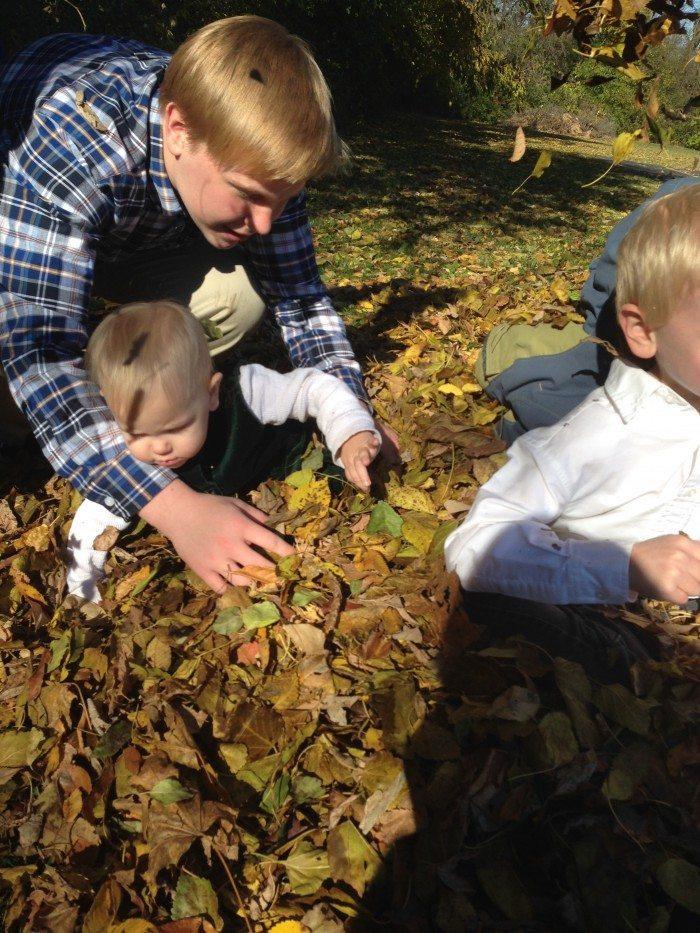 Leaves 008