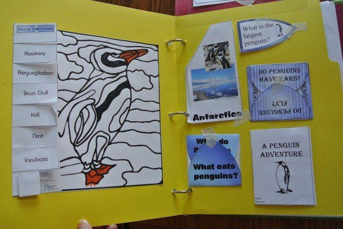 Penguin lapbook 014
