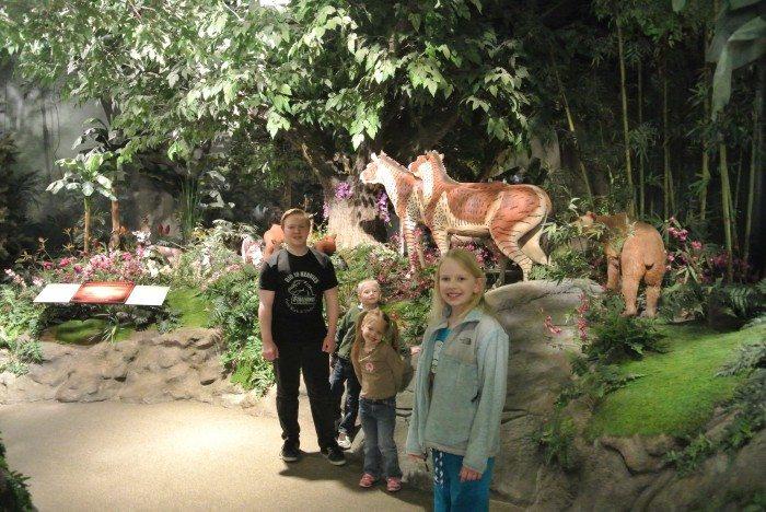 zoo Creation Museum 035