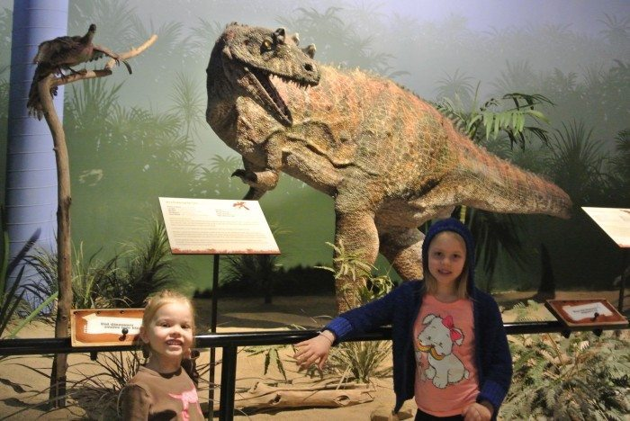 zoo Creation Museum 147