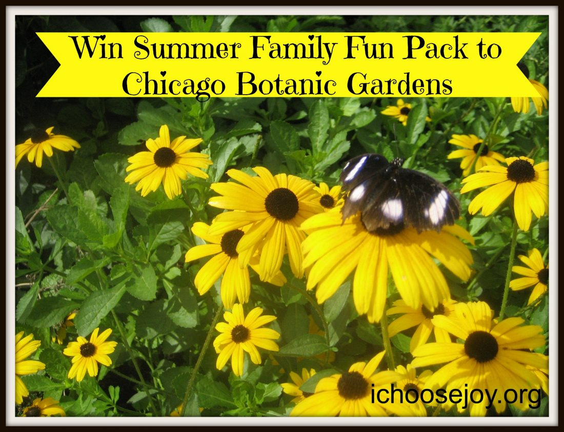 Giveaway Summer Family Fun Pack From Chicago Botanic Gardens
