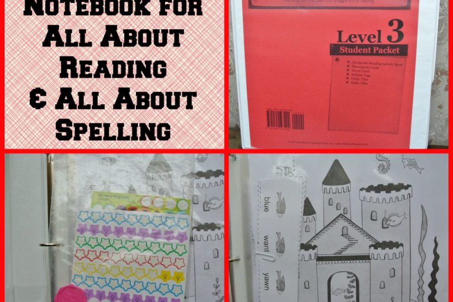 How to Set up a Notebook All About Reading and All About Spelling, homeschool language arts curriculum