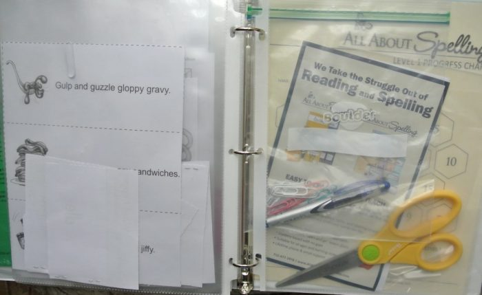 Set up Notebook for All About Reading and Spelling 007