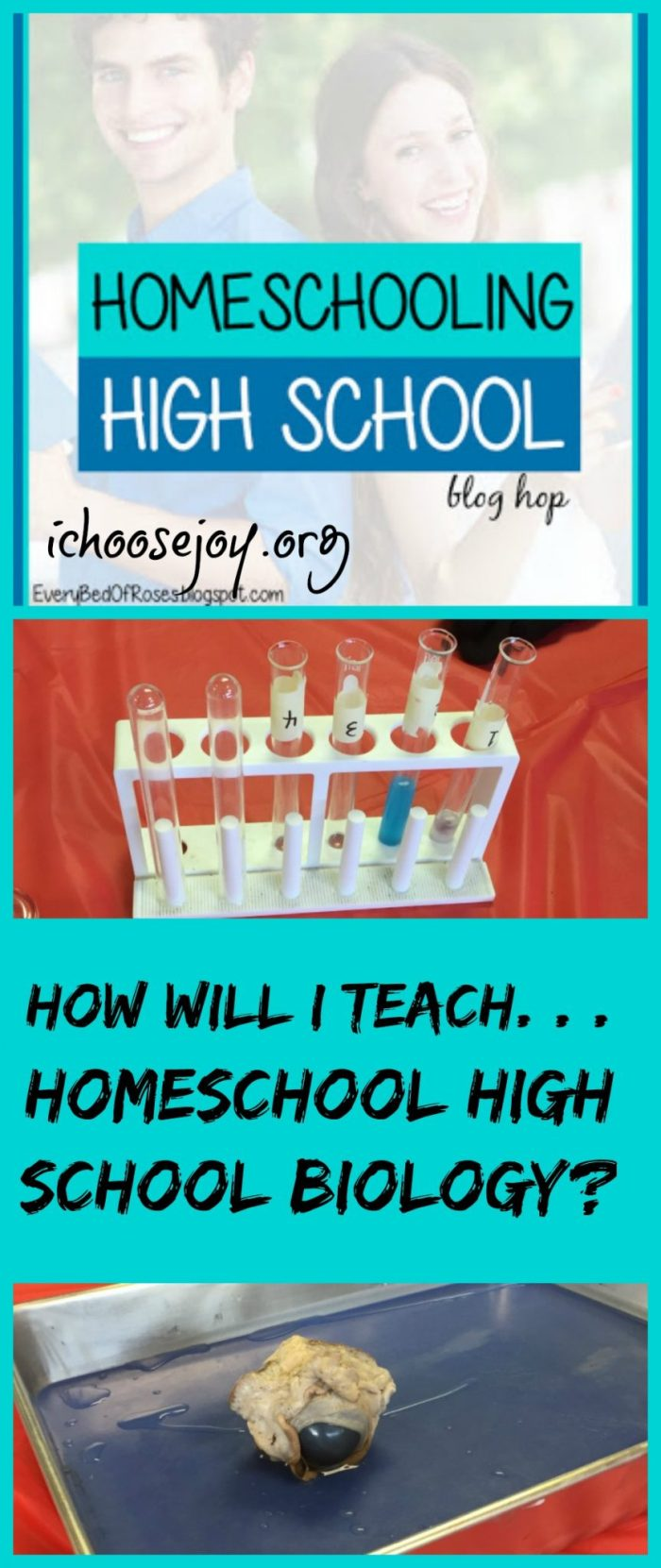 How Will I Teach Homeschool High School Biology
