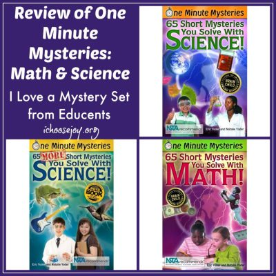 Review: I Love a Mystery Set