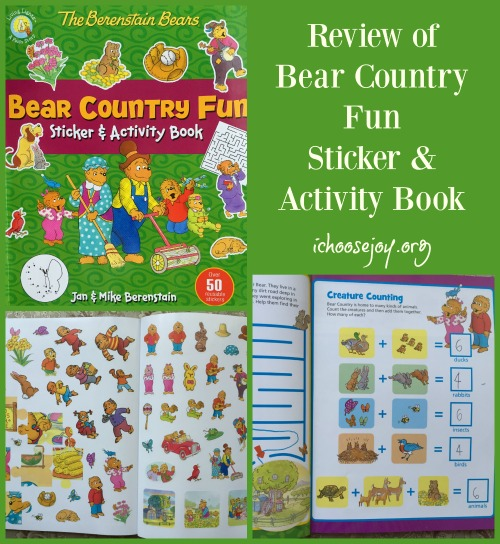 Bear Country Fun Sticker & Activity Book (review)