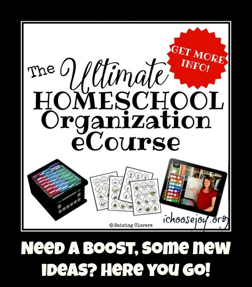 Ultimate Homeschool Organization eCourse review