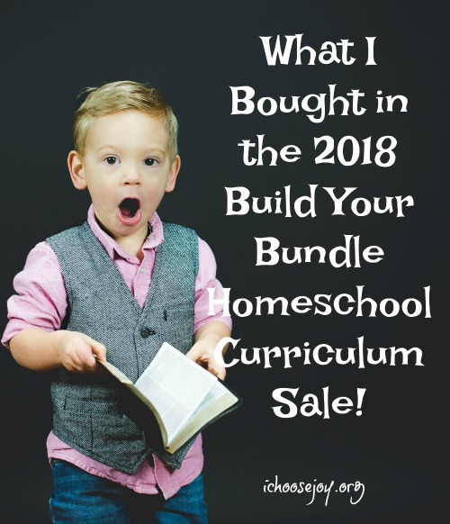 What I Bought in the 2018 Build Your Bundle Homeschool Curriculum Sale
