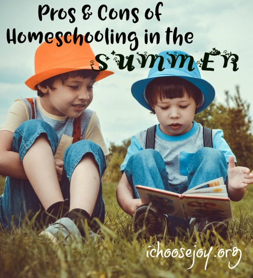 Pros and Cons of Homeschooling in the Summer