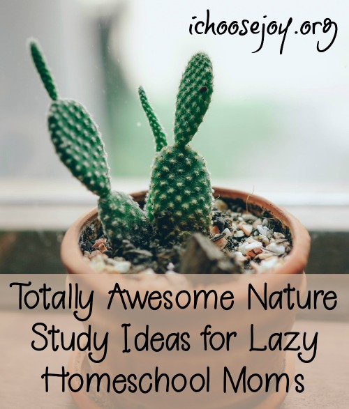 Totally Awesome Nature Study Ideas for Lazy Homeschool Moms