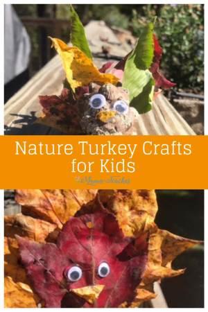 Nature Turkey Crafts for Kids #Thanksgiving #craftsforkids #activitiesforkids