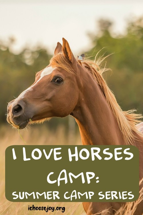 I Love Horse Camp- Summer Camp Series