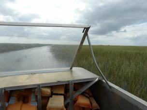 Auf Air Boat Tour durch die Everglades